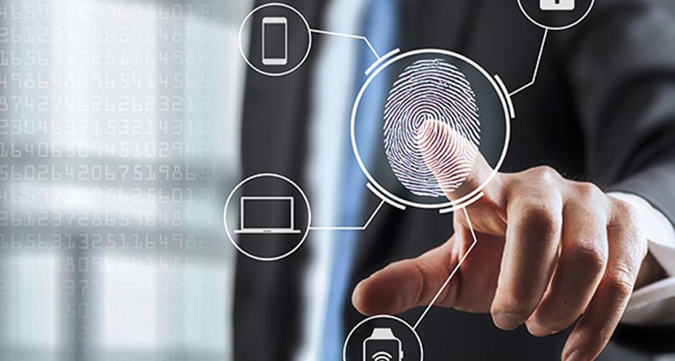 Serveo, expert en solutions télécoms, informatique, réseaux et sécurité 11